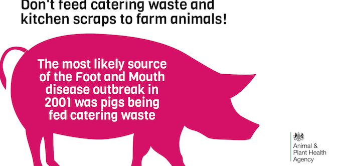 waste food PW 4