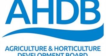 ahdb-generic-logo-700-e1504512556144