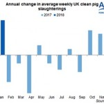 Annual change in ave weekly UK clean pig slaughterings