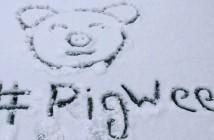 Pig week 3