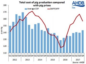 total cost of pig production compared with pig prices