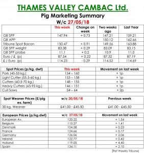 TVC - Pig Marketing Summary - May 27