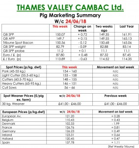 THAMES VALLEY CAMBAC Ltd