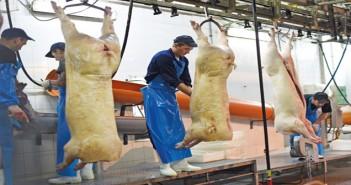 abattoir workers 3