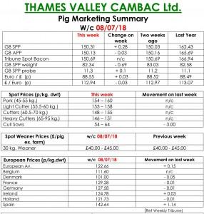 THAMES VALLEY CAMBAC Ltd