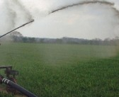 EA issues 'exceptional weather' slurry guidance