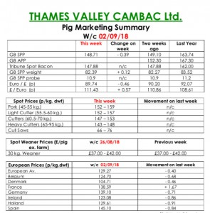 TVC - September 3