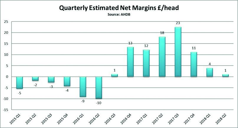 net-margin