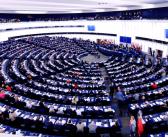 MEPs to investigate alleged transport animal welfare breaches