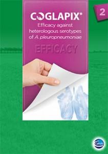 coglapix-brochure