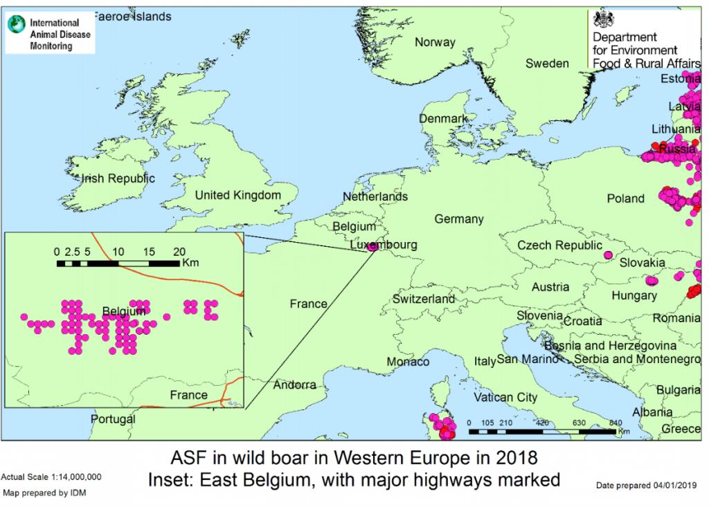 APHA Belgium ASF map
