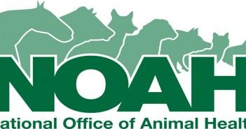 NOAH-logo