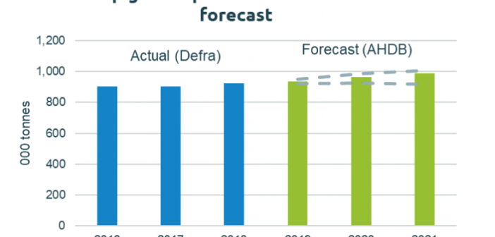 AHDB Outlook Production Forecast
