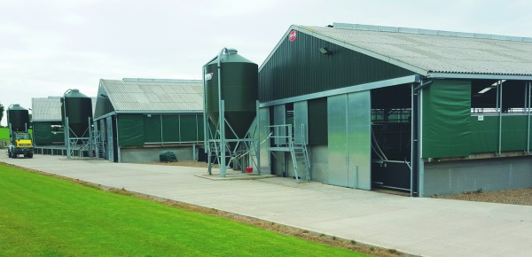 It could become harder to obtain planning permission for new pig buildings under potential changes to environmental rules