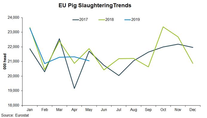eu-pig-slaughter