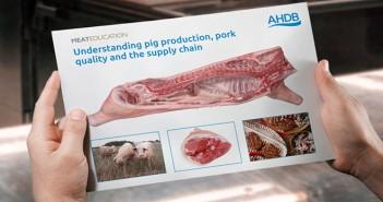 Meat Ed Understanding