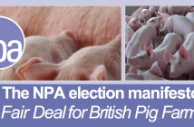 NPA General Election manifesto