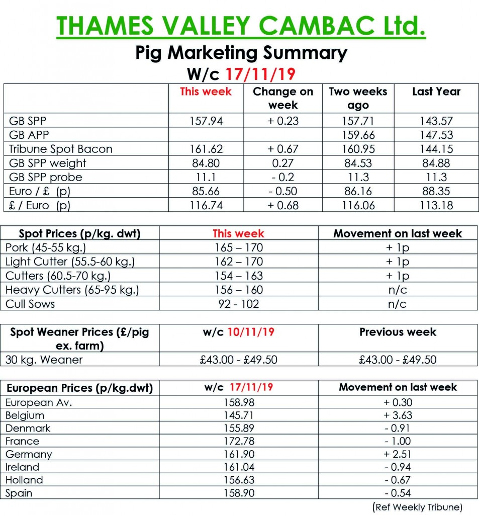 TVC - 18.11.19