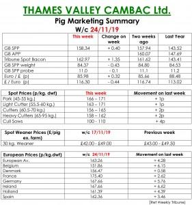 TVC - 25.11.19