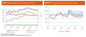 eu-medium-term-outlook-pork-image