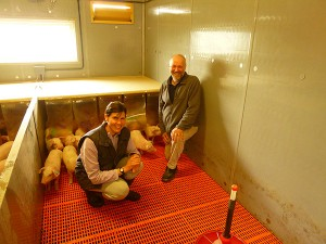 Stephen Thompson of Povey Farm, Sheffield, has achieved very low antibiotic usage