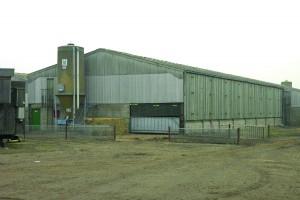 OLD pig building