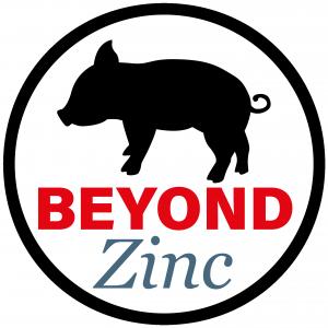 Beyond Zinc Logo
