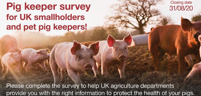 ASF smallholder survey static FB