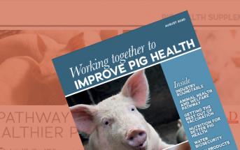 Pig World August Supplement - Improve Pig Health