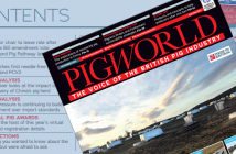 Pig World November 2020 Digital Edition