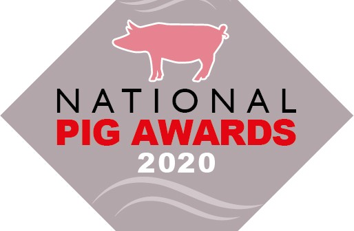 grey pig award logo 2020_RGB