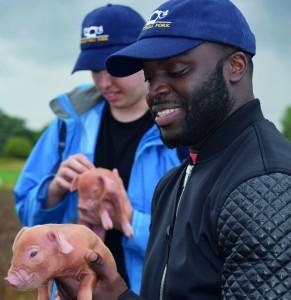 Chefs visit the Haywards' farm