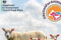 Farm Animal Welfare Action Plan