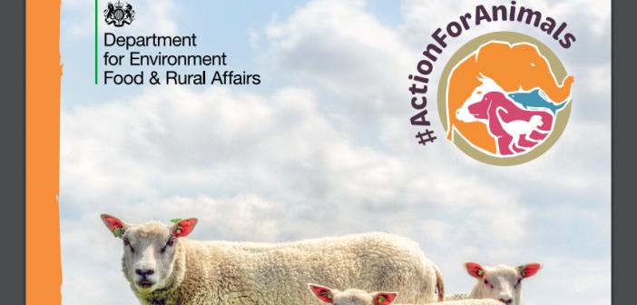 Farm Animal Welfare Action Plan