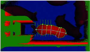 Image of eYeScan (3D) showing the step in the process where the body characteristics are determined to calculate the pig features such as body width, length and area. From Vranken and Berckmans 2017.