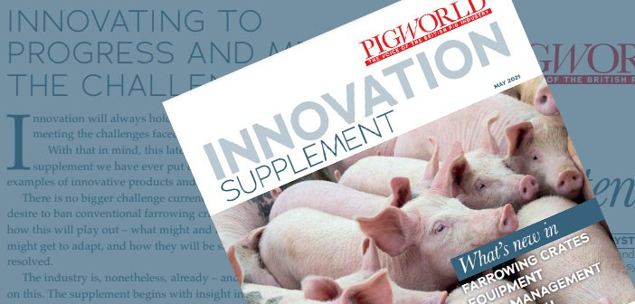 innovation-supplement