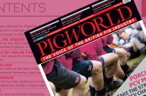 pw-featured-may