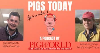 Pigs Today podcast