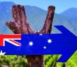 Australia,Flag,Wooden,Sign,With,Winery,Background