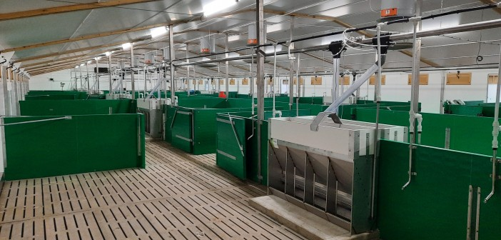 TRIAL PENS WITH FEEDER SYSTEM 2 (1)
