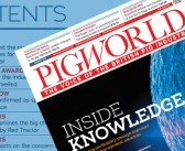 Protected: Pig World – August 2021