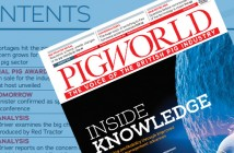 pw-august-21