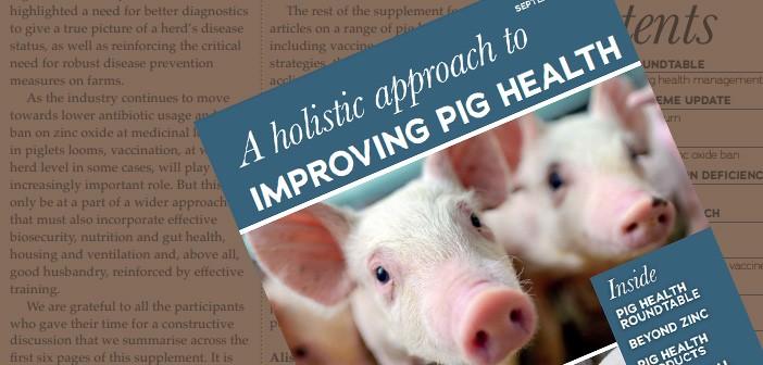 Protected: Pig World – Health Supplement – September 2021