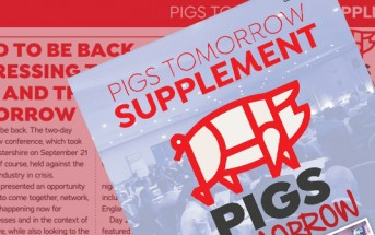 pigs-tomorrow-2021-supplement