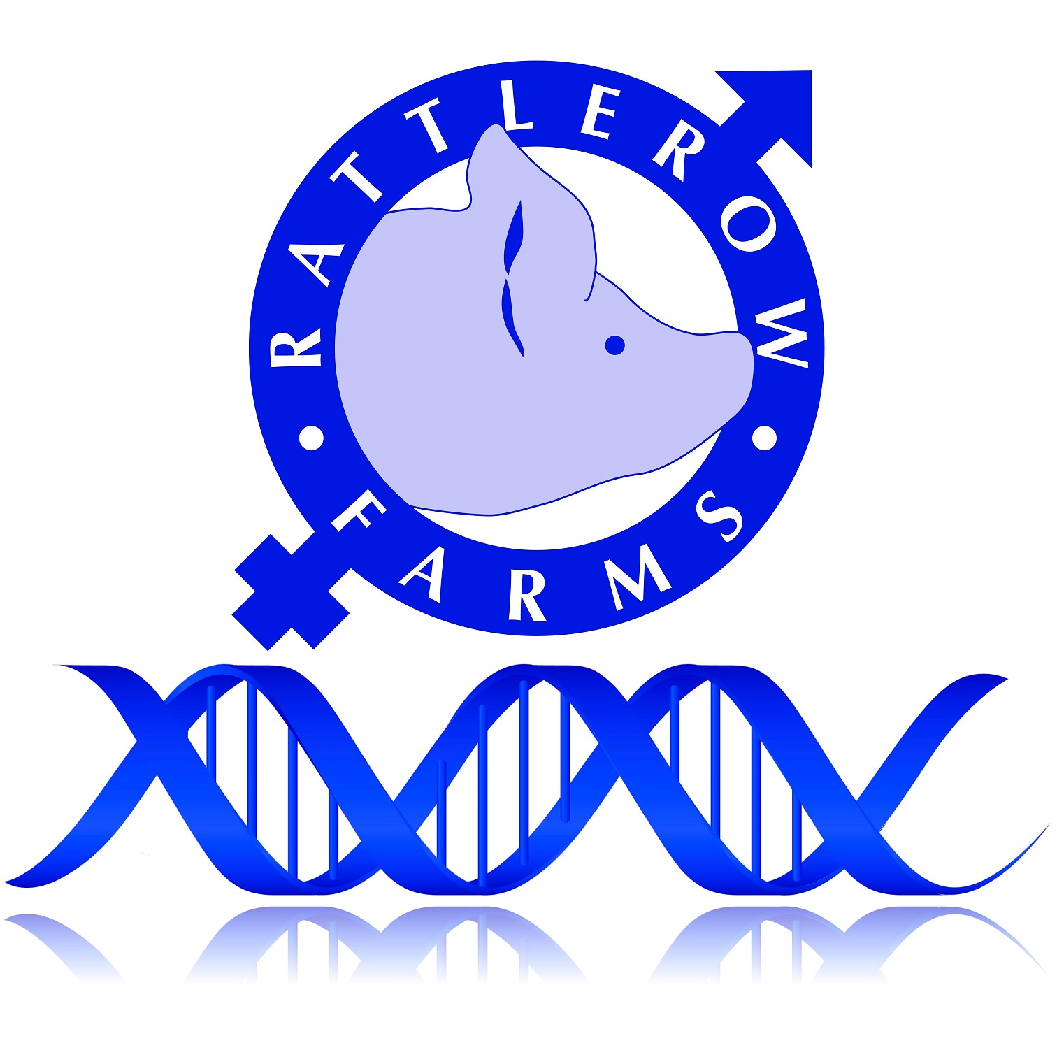Rattlerow Farms