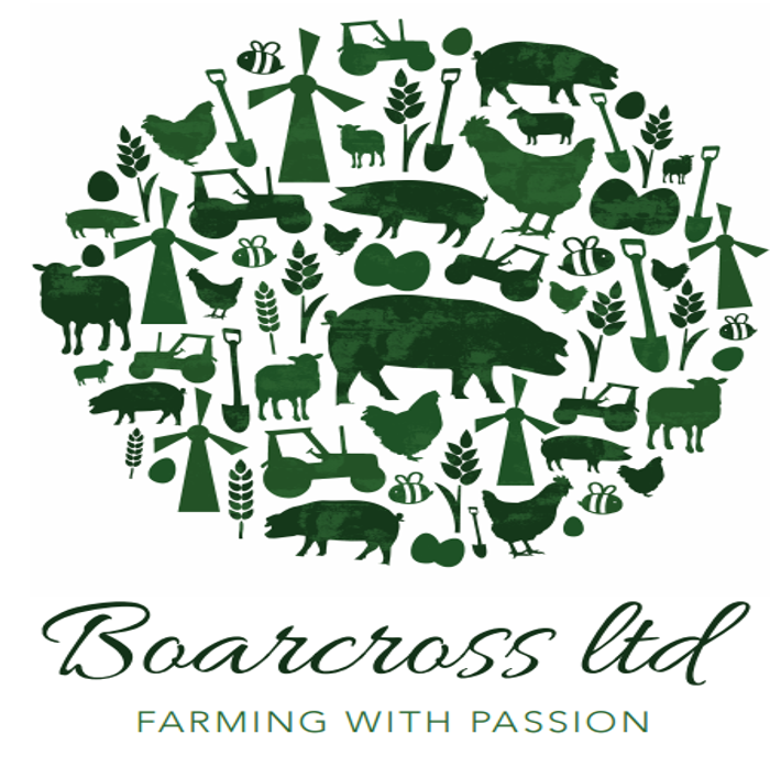 Boarcross Ltd